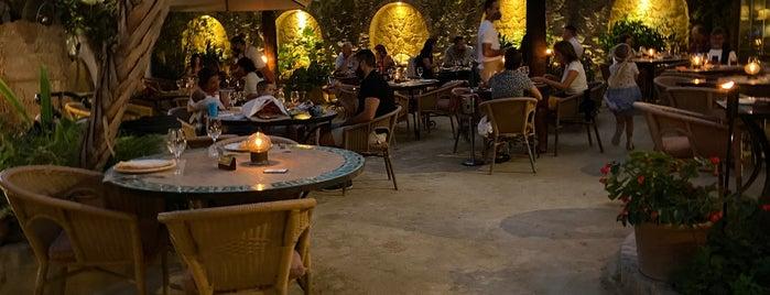 El Jardín del Califa is one of HL Cafes Try.