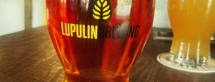 Lupulin Brewing is one of Tempat yang Disukai Liz.