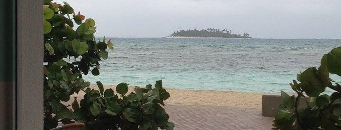 Sea Watch Caffe is one of สถานที่ที่ Diego ถูกใจ.