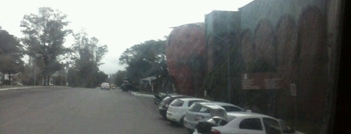 Bom Princípio is one of Cidades do Rio Grande do Sul.