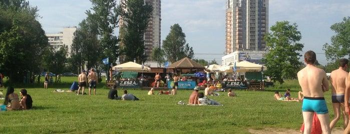 Строгинская пойма is one of Москва лето 2017.