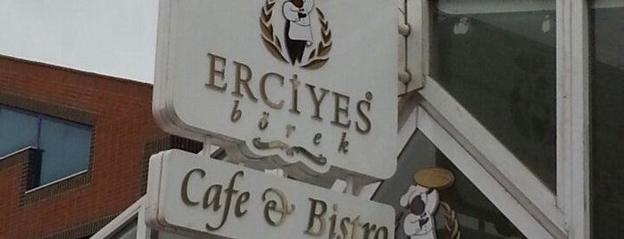 สถานที่ที่ Berke ถูกใจ