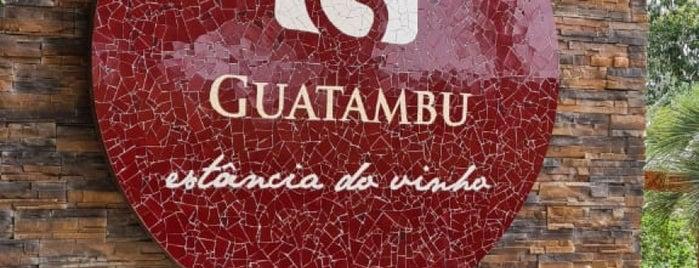 Guatambu - Estância do Vinho is one of Wine World.