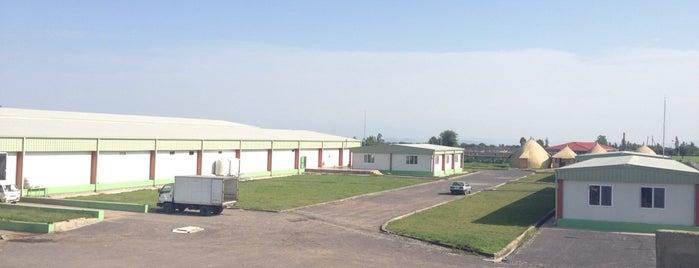 AKSEKER ETHIOPIA CASING PLC. is one of สถานที่ที่ TARIK ถูกใจ.