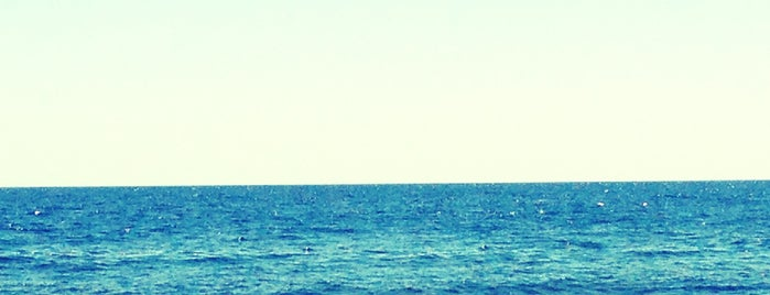 Пляж Совиньон is one of Kotobckuuさんの保存済みスポット.
