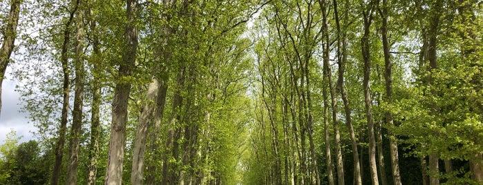Jardins du Château de Versailles is one of Paris Essentials.