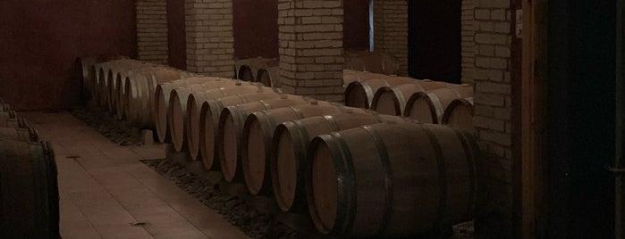 Κτήμα Βασιλείου is one of Wineries.