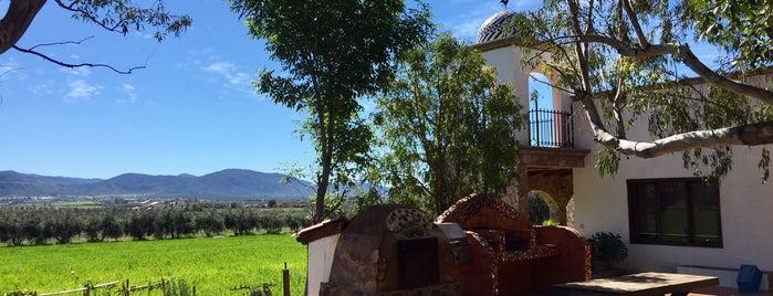 Viniphera Vinoterapia & Spa is one of Valle de Guadalupe / Ensenada Road Trip.