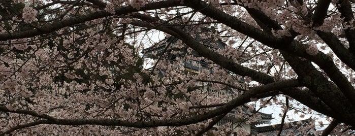 小山城 is one of ドライブ|お城スタンプラリー.