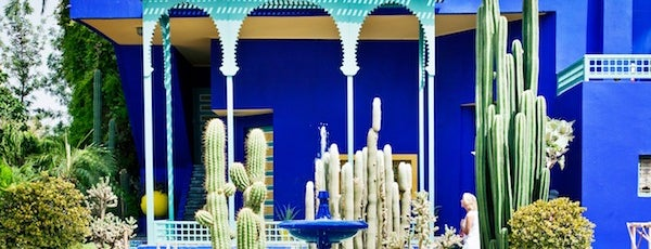 Majorelle Gardens is one of {moroccan moments}.