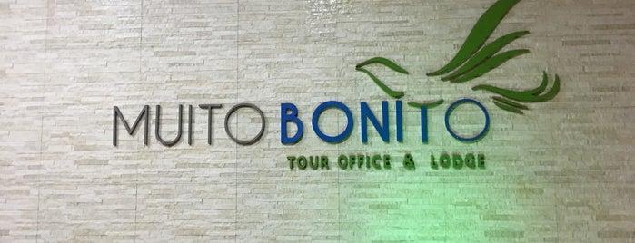 Pousada Muito Bonito is one of Posti che sono piaciuti a Erica.