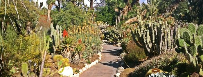 Desert Gardens is one of Los Angeles.