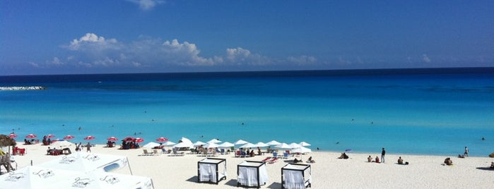 Oceanview Bluebar is one of Cancún.