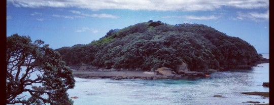 Goat Island is one of Close to Auckland.
