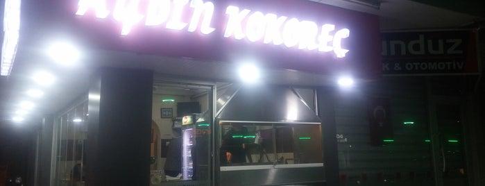 Aydın Kokoreç is one of Tempat yang Disimpan Dans Müzik Ve Doğa.