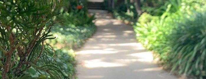 Meditation Garden At Encinitas is one of Best of San Diego.
