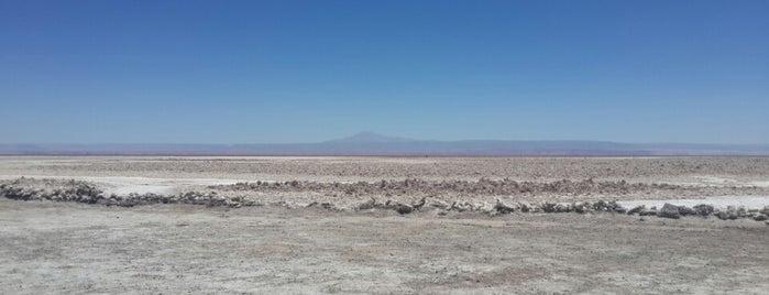 Salar de Atacama is one of Chile.