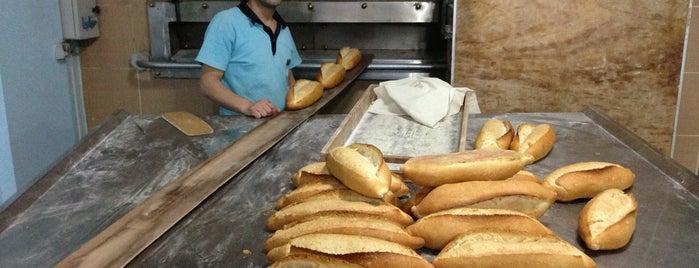 Miray Fırın is one of Coffeeshops, Bakeries,Patisseries, Ice Cream etc..