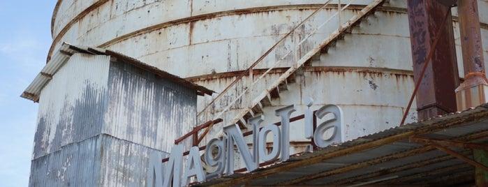 Magnolia Market is one of Waco, TX.