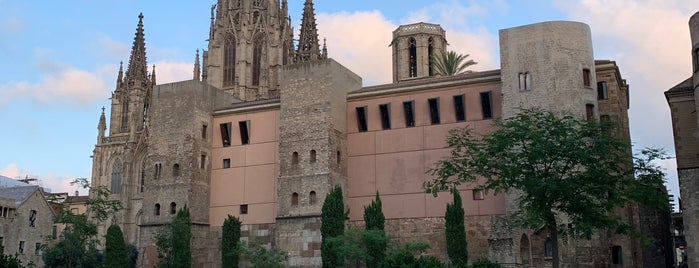 Catedral De Barcelona is one of Barcelona.