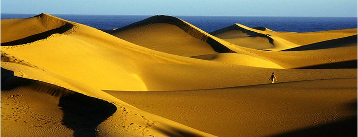 Dunas de Maspalomas is one of Gran Canaria.