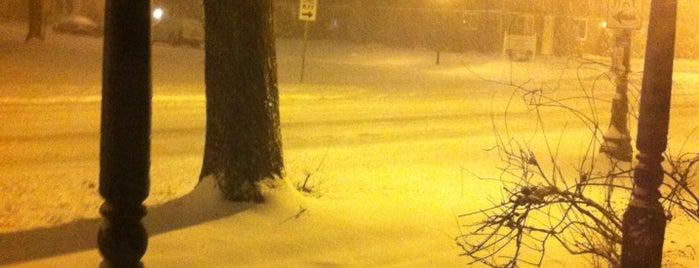 Snowpocalypse FW 2013 is one of common scense.