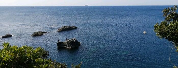 潮岬の鯨山見 is one of Lugares favoritos de Shigeo.