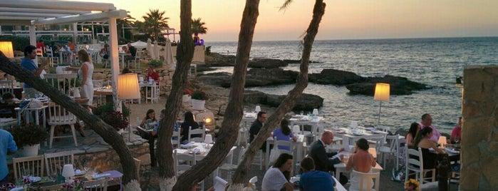 Prima Plora is one of Greek Food Hangouts.