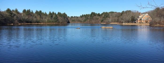 New Pond Conservation Area is one of Places to Bring Mona.