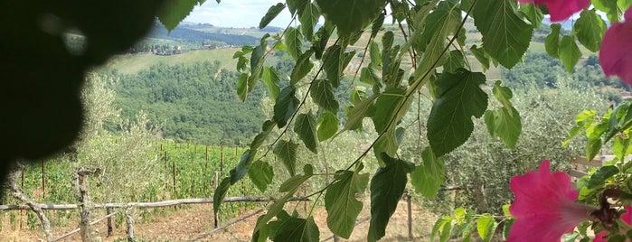 La cantinetta di rignana is one of Tuscany.