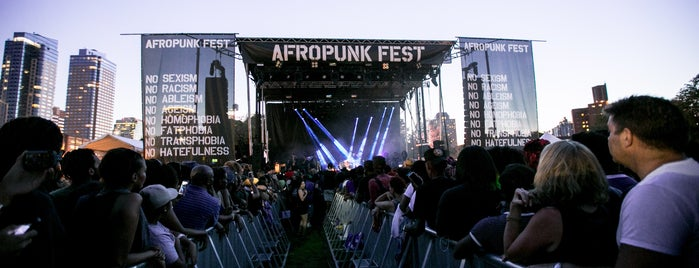AfroPunk 2015 is one of Lieux qui ont plu à Hillary.