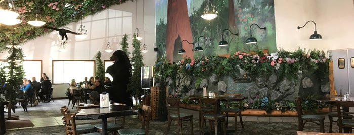 Forest Cafe is one of Chad 님이 좋아한 장소.