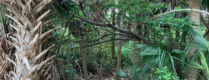 Lantana Nature Preserve is one of Clara 💜.