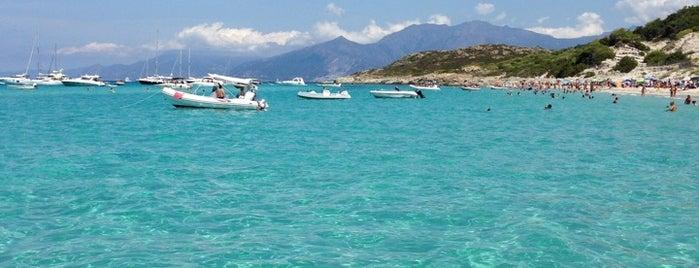 Plage de Saleccia is one of Corsica favs.