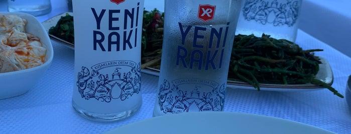 İskele Çardak 1947 is one of Özlem'in Kaydettiği Mekanlar.