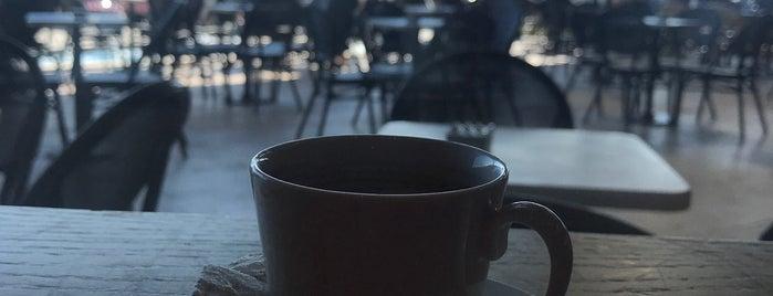 Starbucks is one of Edremit.