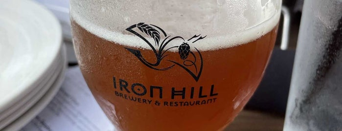 Iron Hill Brewery & Restaurant is one of Haywood & Orchard Park.