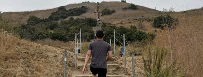 Nobody Hikes in L.A.