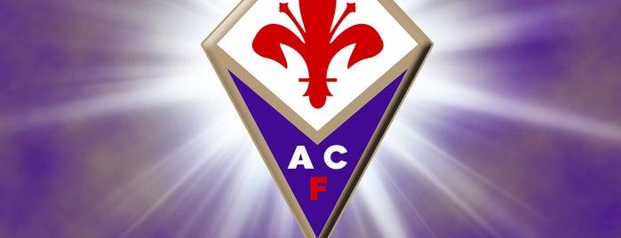 Stadio Comunale Artemio Franchi is one of Lega Calcio TIM Serie A 2013-2014.