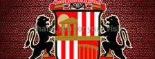 Stadium of Light is one of English Barclay Premier League 2013 - 2014.