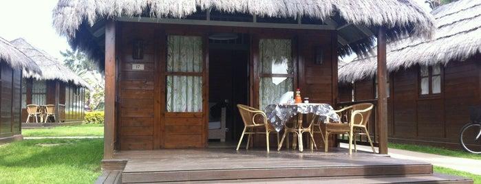 Camping & Resort Sangulí Salou is one of สถานที่ที่ Adriana ถูกใจ.