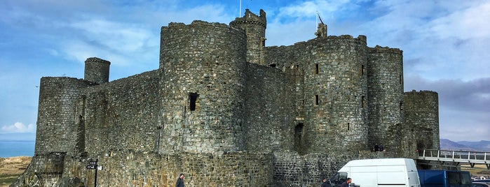 Harlech Castle is one of The Dog's Bollocks' North Wales.