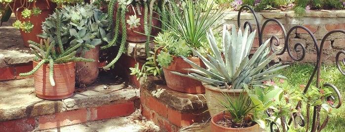 Chandor Gardens is one of สถานที่ที่ David ถูกใจ.