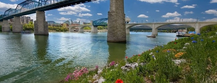Chattanooga, TN is one of Most Populous Cities in the United States.