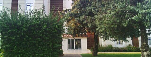 Diş Hekimliği Fakültesi is one of Tempat yang Disukai Seyfi.