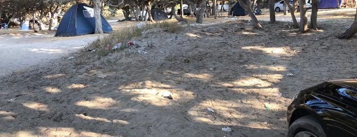 Kalyoncu Camping is one of Kamp Yerleri.