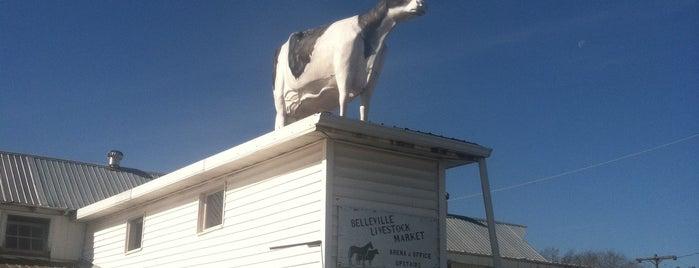Belleville Farmers' Market & Livestock is one of Posti che sono piaciuti a ed.