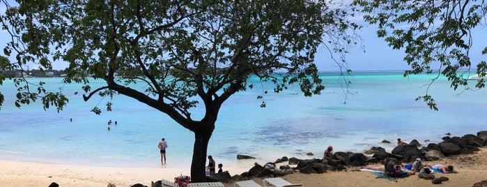 La Cuvette Public Beach is one of สถานที่ที่ Eser Ozan ถูกใจ.