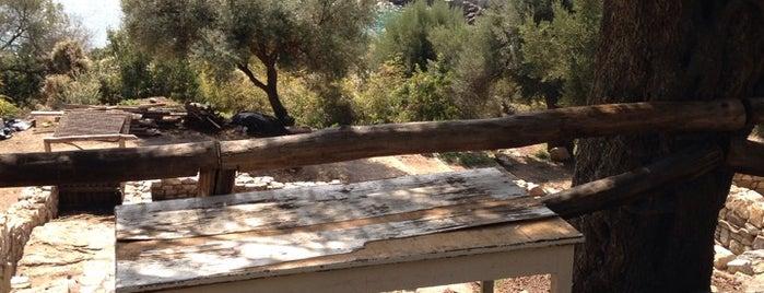 Αρχαία Στάγειρα (αρχαιολογικός χώρος) is one of George's Liked Places.