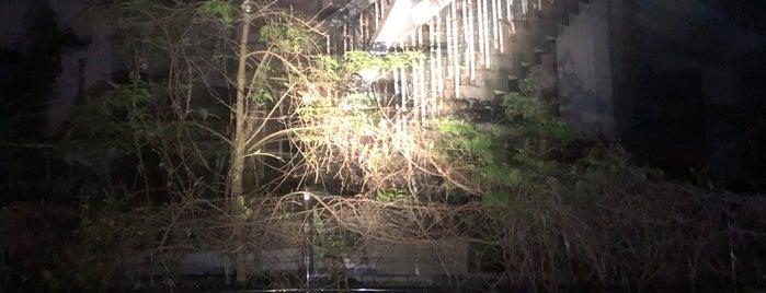 Tenjo Bridge is one of Posti che sono piaciuti a モリチャン.
